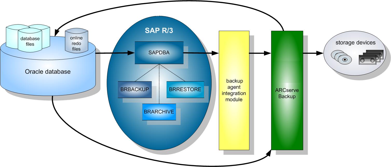arcserve� backup for unix and linux enterprise option for sap r 3 SAP Modules Descriptions agent integration process
