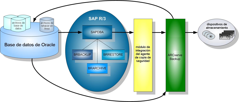 Opción Enterprise Para Sap R 3 Para Oracle De Ca Arcserve